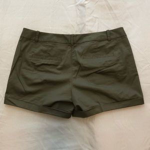 The Limited Shorts - The Limited shorts